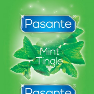 Pasantre Mint 40 бр.